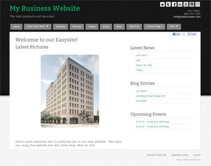 Create a Business Website