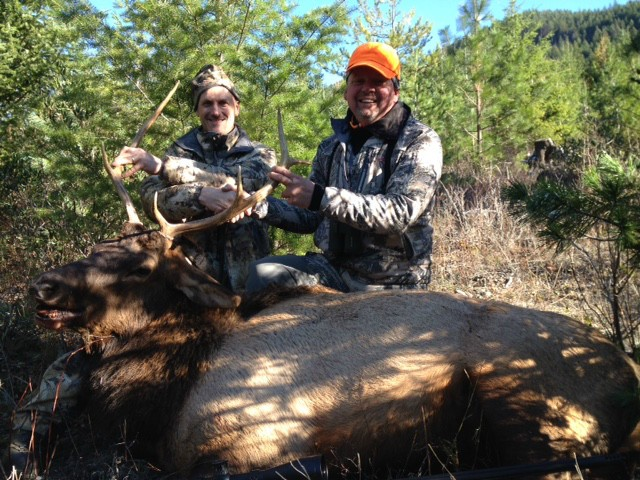 John Galica Elk at 800 yards. Shot in Montana
