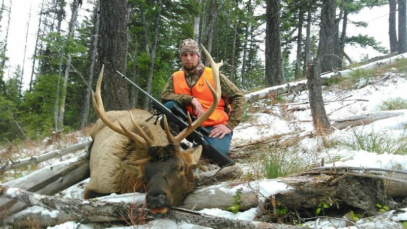 Don Shartzer- Elk at 456 Yards Shot in Motana