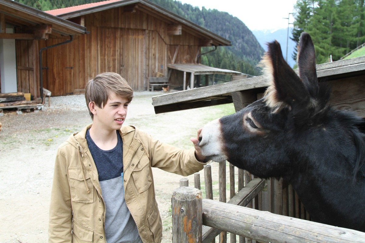 Getting to know the farm animals in South Tyrol, Italy.