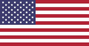 Our Government U.S. Flag