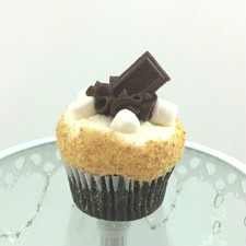 Smores Cupcake! Chocolate cupcake with Wippy Dip icing, rolled in graham cracker crumbs and topped with a dollop of fudge icing, marshmallows and a piece of Hershey's choclate!