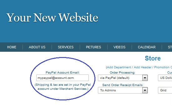 Picture: How To Add Your PayPal Details To Start An Online Store
