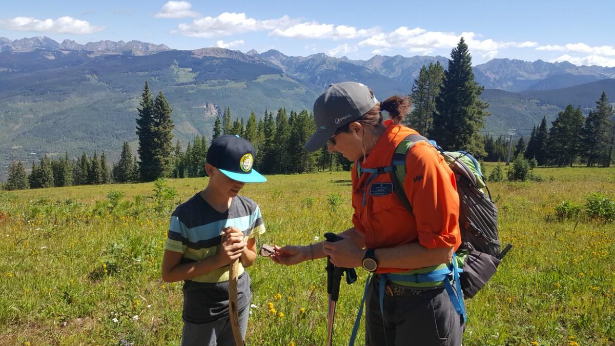 Wildflower hike in Vail, Colorado