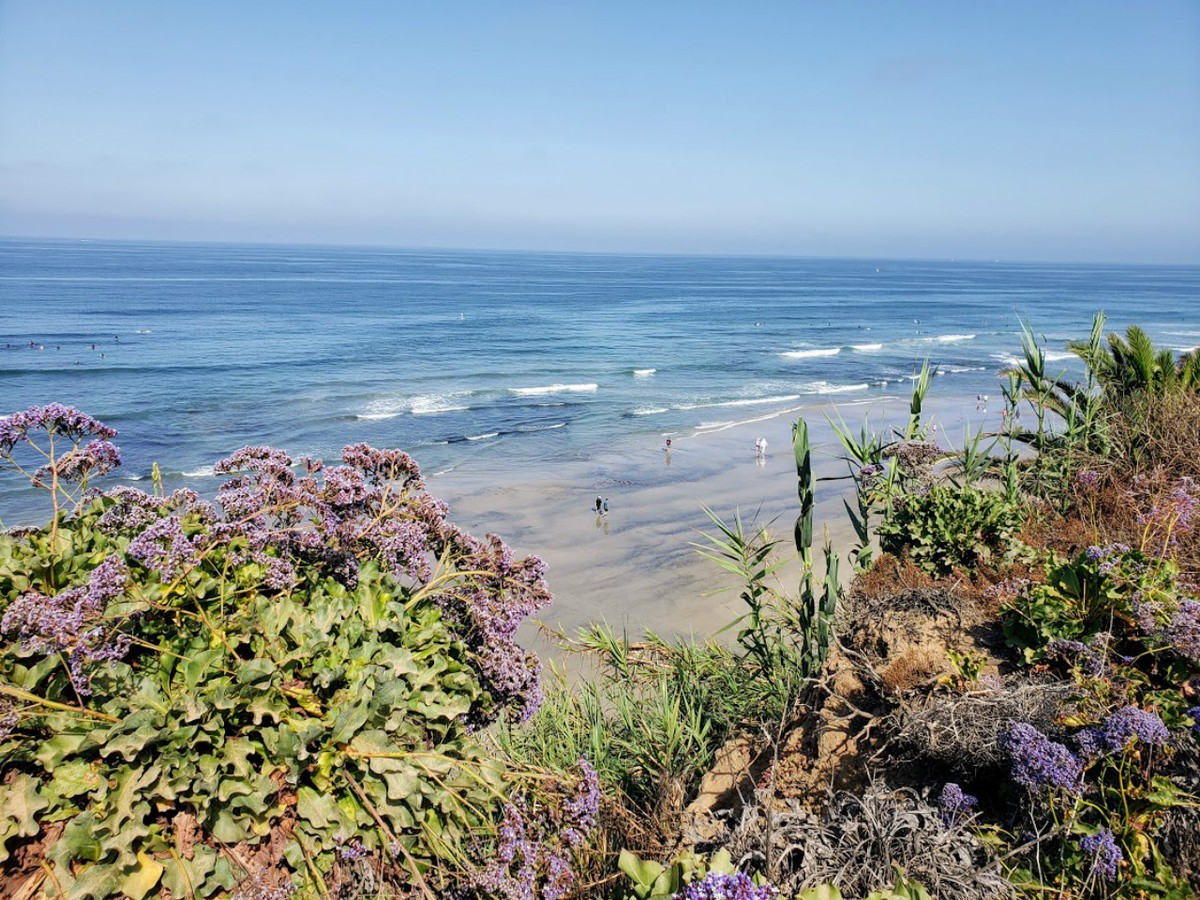 The Del Mar coastline