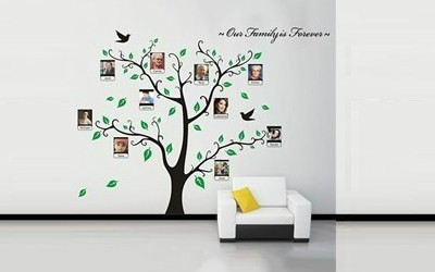 Family is Forever this green leaf Tree design wall photo frame fully removable wall sticker.