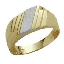Men's 10 Karat Two-Tone Gold Stylish Ring