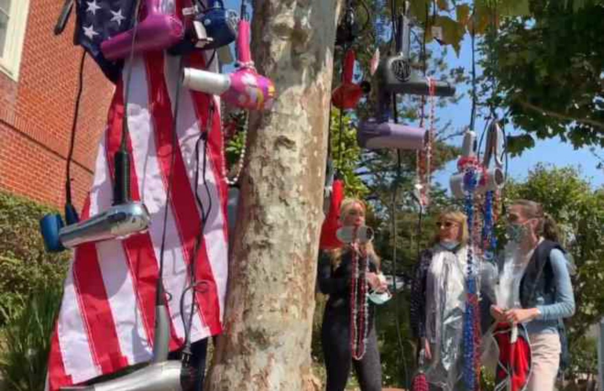 hair dyer tree pelosi's house