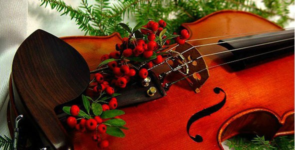 The Upper Arlington Orchestra Parents Association Thanks you for a wonderful 2018 and we wish you a joyous and safe Holiday Season.